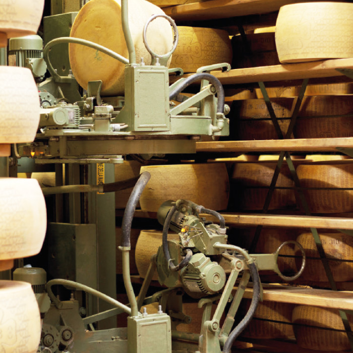 Picture of a cheese curing robot